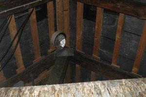 Duer på loftet efterlader duelort. Vi kan foretage oprens efter fugletilhold