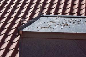 Duesikring med wirer mod fugletilhold efter duer på altanen