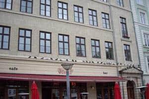 Duepigge opsættes på ejendomme i København og Århus