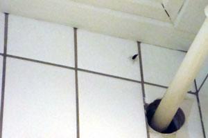 kakerlak og Tyske kakerlakker bekæmpes via ædegift, sprøjtning eller tågebehandling