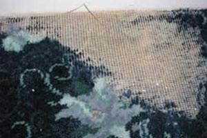 Møl og klædemøl ødelægger tøj og tekstiler og bør bekæmpes