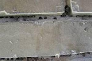 Murbier laver huller i fugerne, hvor de udnytter dårlig mørtel. Bekæmpelse af murbier bør foretages af prof.