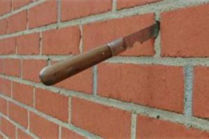 Bier i muren forveksles fejlagtigt med murbier. Murbier lever ikke i et bibo som bier