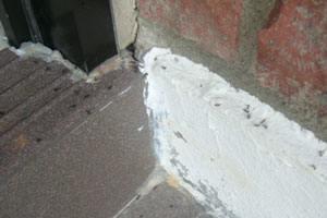 Bekæmpelse af myrer foregår via udvanding og indvendig behandling