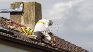 Fjernelse af hvepsebo på loft og i udhæng