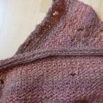 Klædemøl kaldes også tekstilmøl