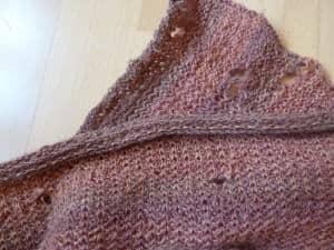 Møl laver huller i tøj. Dette møl kaldes for klædemøl eller tekstilmøl