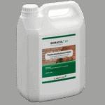 Borebiller og træorm kan bekæmpes med boracol