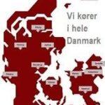 Hvepsebo-fjernes-i-Koebenhavn-Aarhus-Odense-Esbjerg-Aalborg