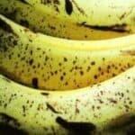 Bananfluer slip af med dem